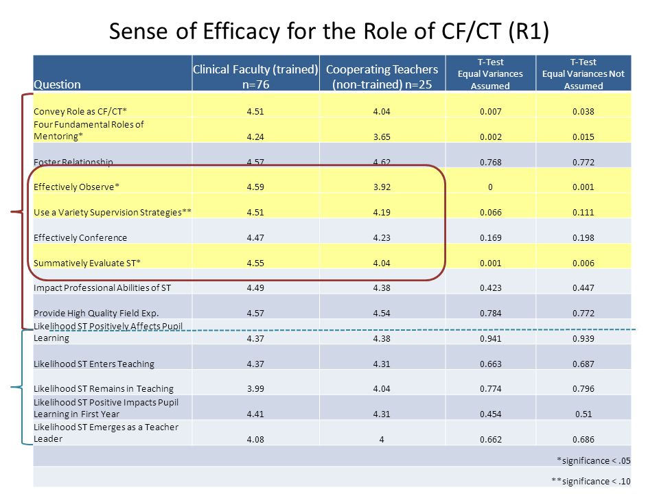 Sense of Efficacy for the Role of CF/CT (R1)