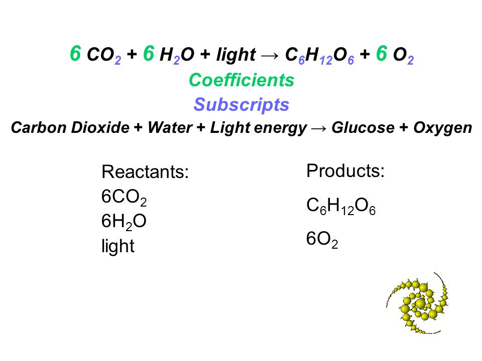 Carbon Dioxide + Water + Light energy → Glucose + Oxygen