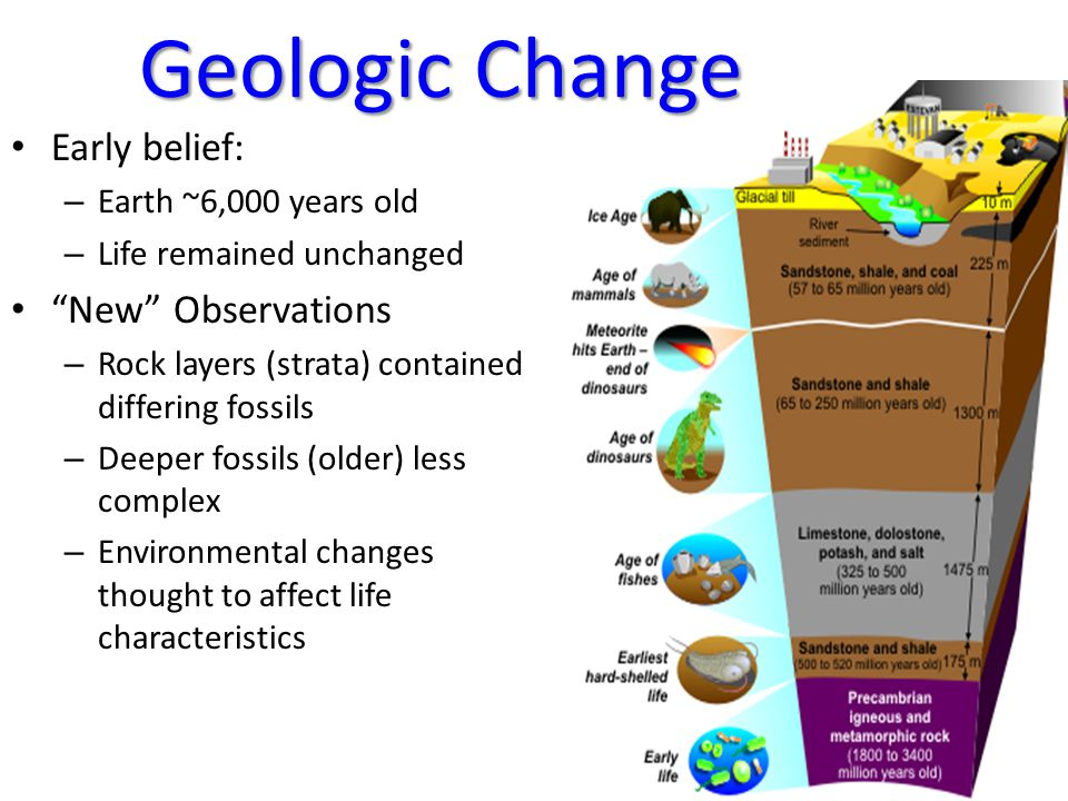 Geologic Change Early belief: New Observations