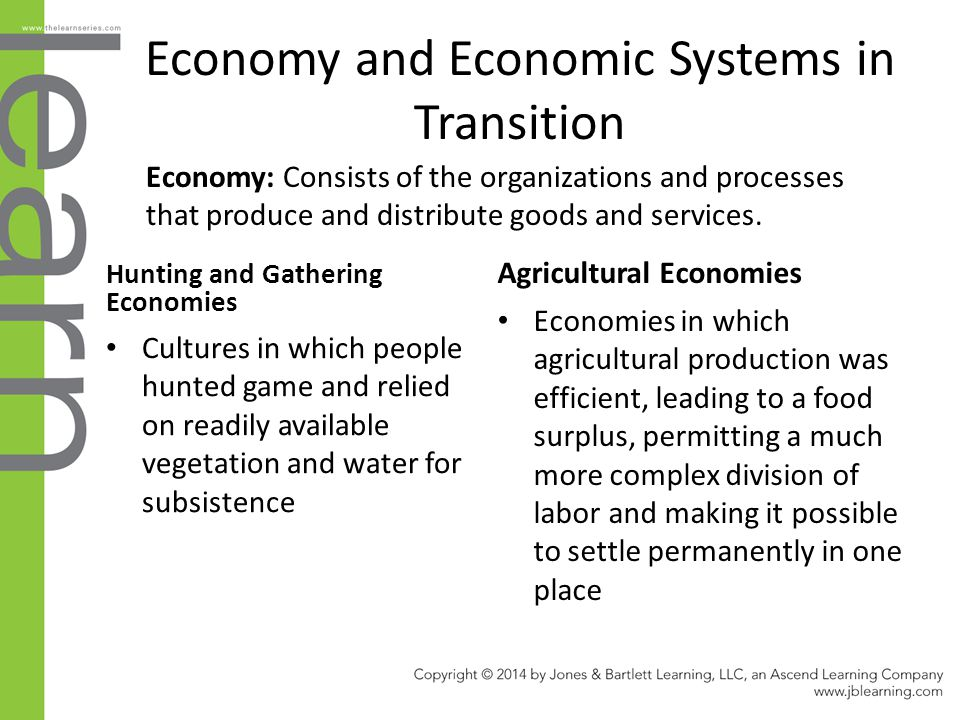 Economy and Economic Systems in Transition