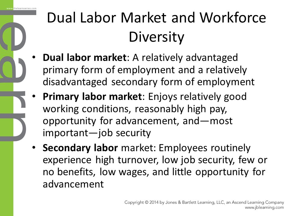 Dual Labor Market and Workforce Diversity