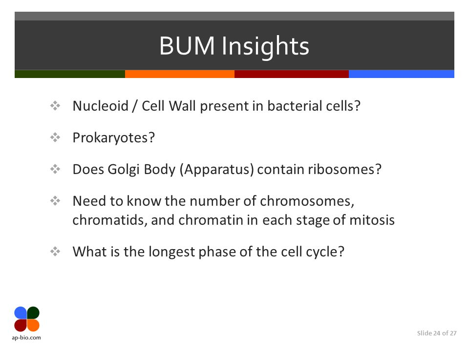 BUM Insights Nucleoid / Cell Wall present in bacterial cells