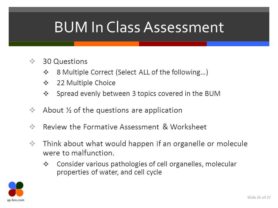 BUM In Class Assessment