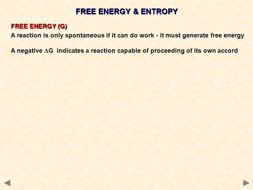 FREE ENERGY & ENTROPY FREE ENERGY (G)