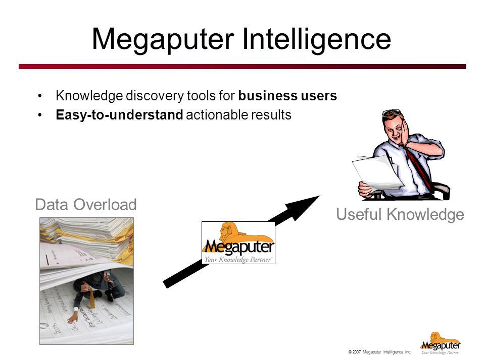 Megaputer Intelligence