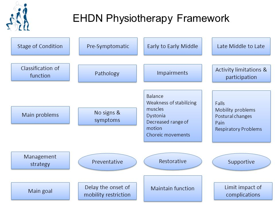 EHDN Physiotherapy Framework