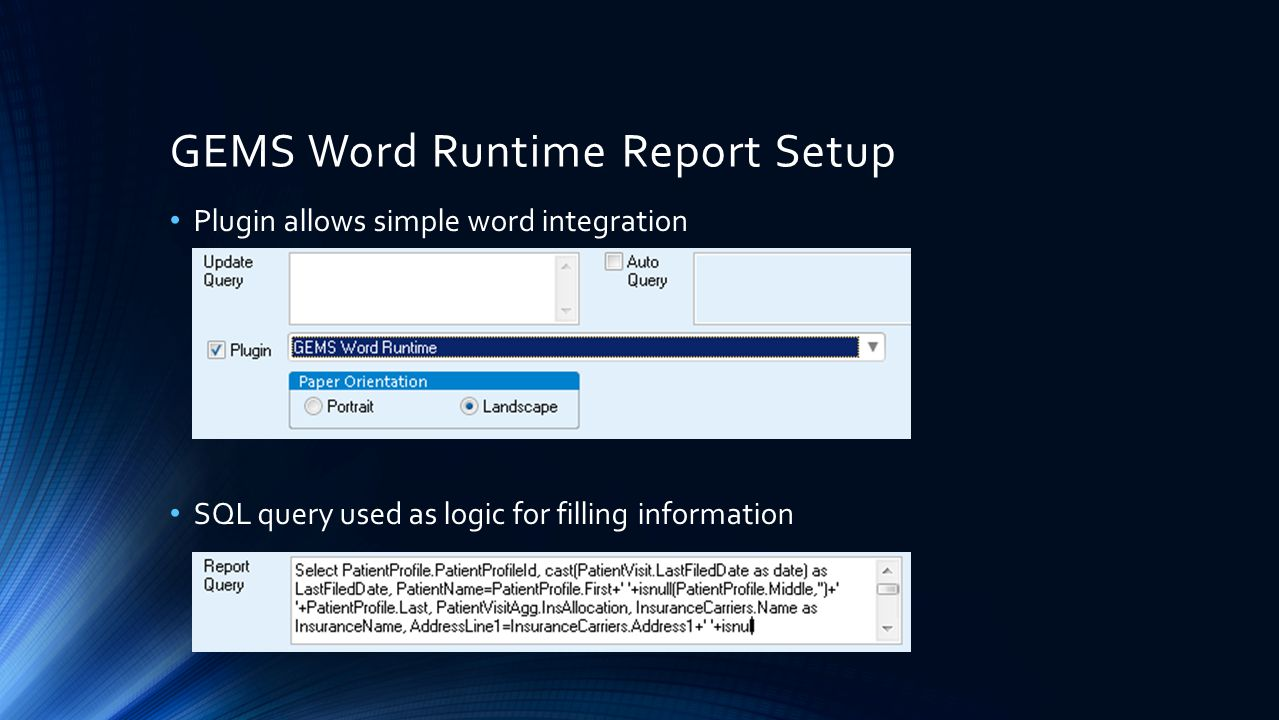GEMS Word Runtime Report Setup