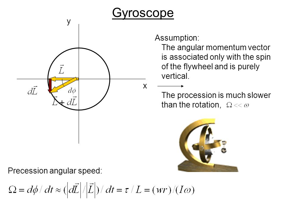 Gyroscope y Assumption: The angular momentum vector