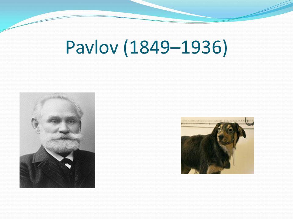 Pavlov (1849–1936)