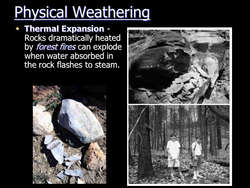 Physical Weathering Thermal Expansion - Rocks dramatically heated by forest fires can explode when water absorbed in the rock flashes to steam.