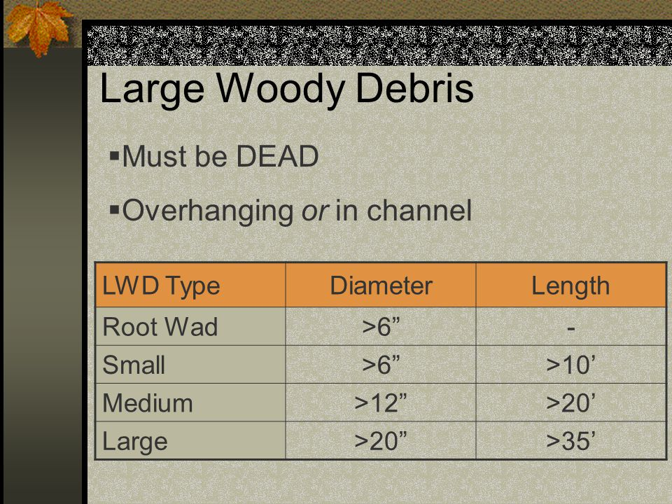 Large Woody Debris Must be DEAD Overhanging or in channel LWD Type