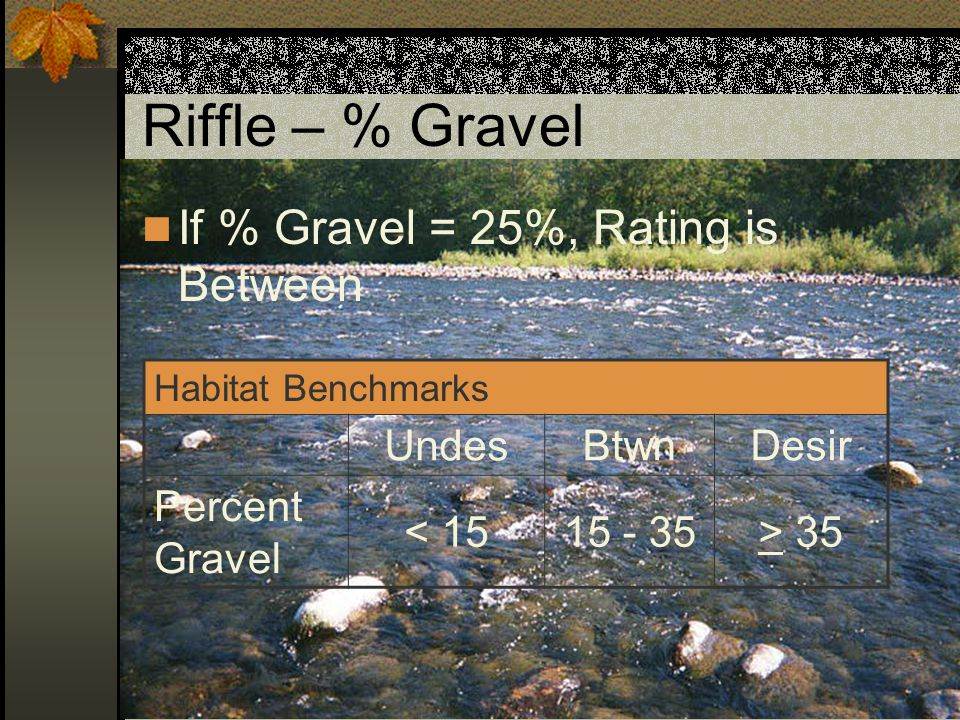 Riffle – % Gravel If % Gravel = 25%, Rating is Between Undes Btwn