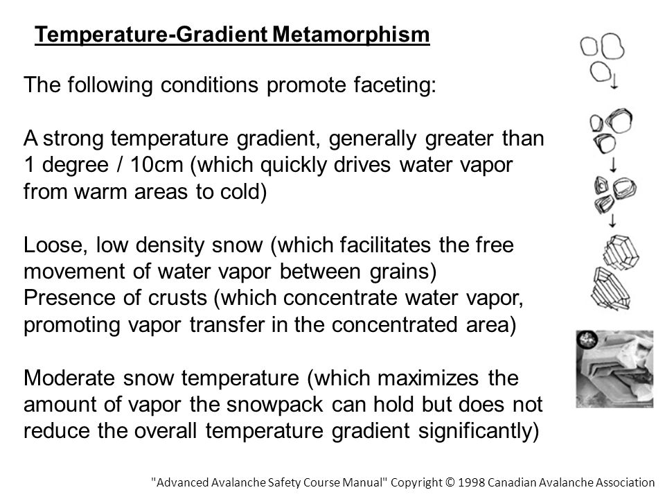 Temperature-Gradient Metamorphism