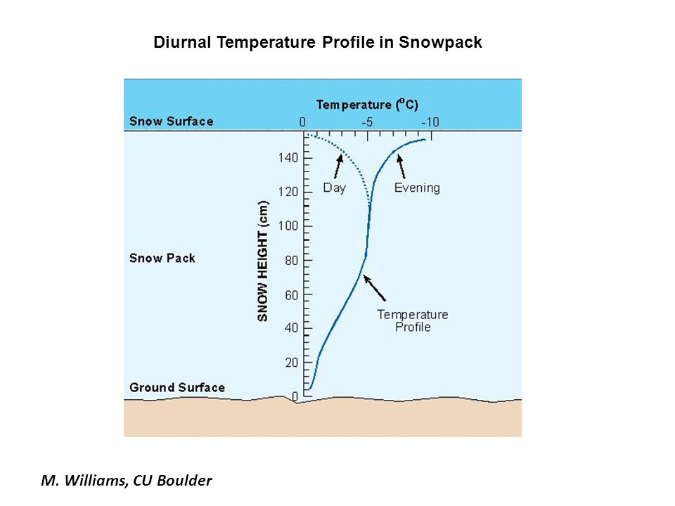 Diurnal Temperature Profile in Snowpack