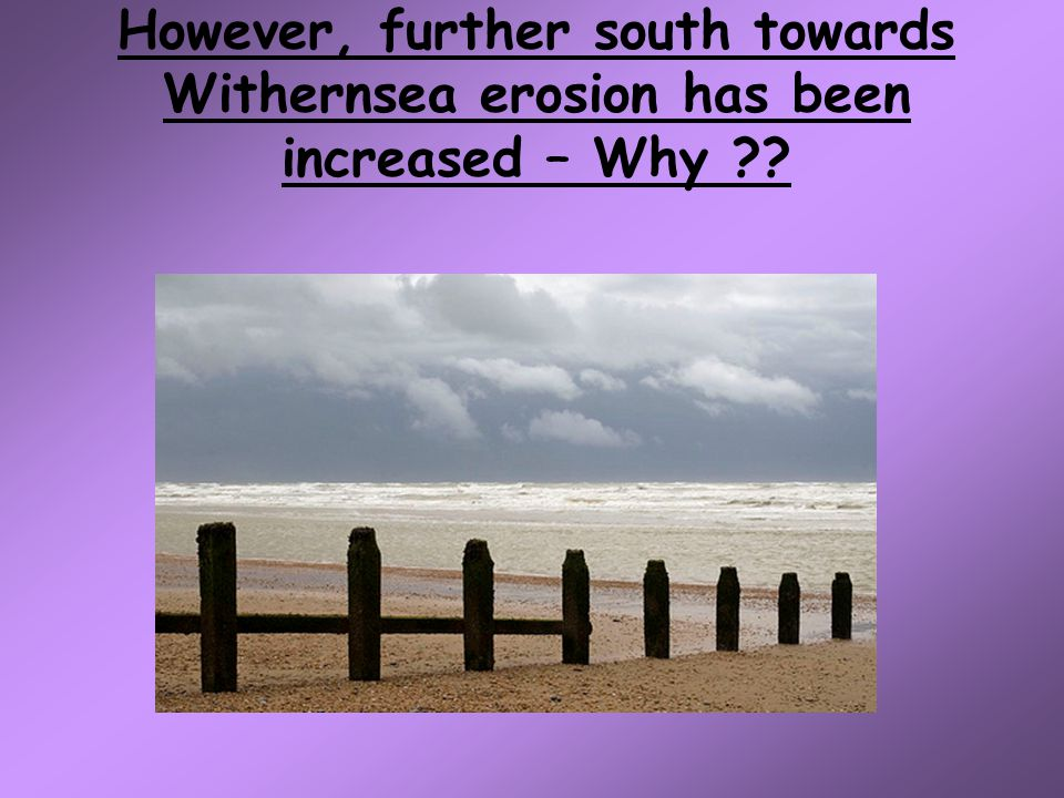 However, further south towards Withernsea erosion has been increased – Why
