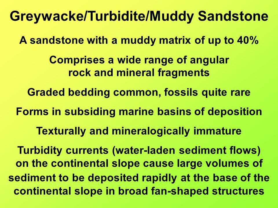 Greywacke/Turbidite/Muddy Sandstone