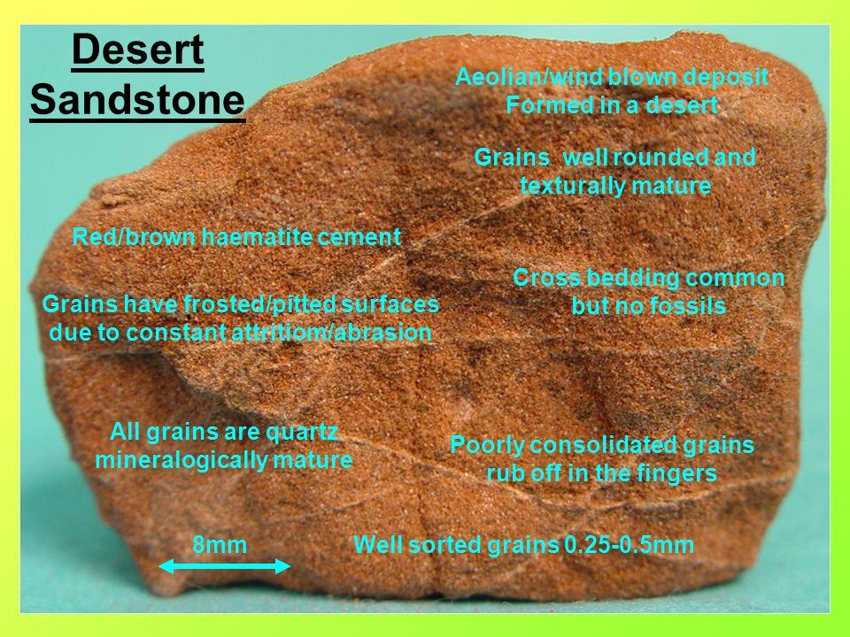 Desert Sandstone Aeolian/wind blown deposit Formed in a desert