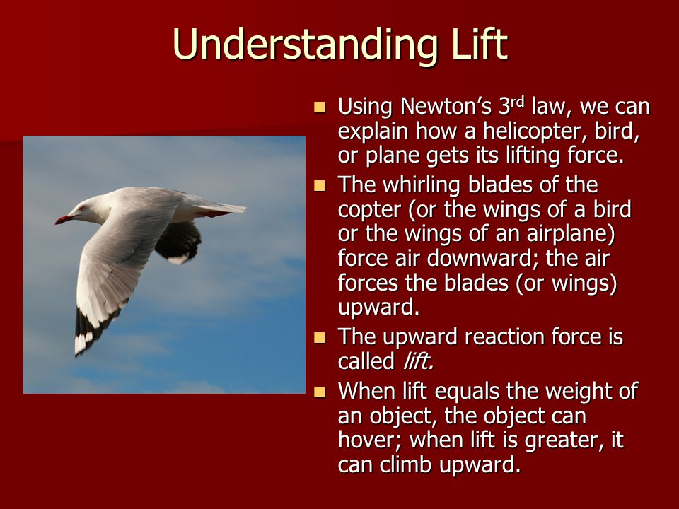 Understanding Lift Using Newton's 3rd law, we can explain how a helicopter, bird, or plane gets its lifting force.