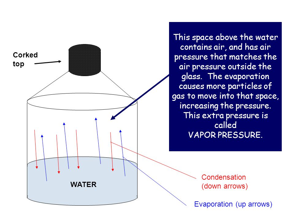 This space above the water contains air, and has air pressure that matches the air pressure outside the glass. The evaporation causes more particles of gas to move into that space, increasing the pressure. This extra pressure is called VAPOR PRESSURE.
