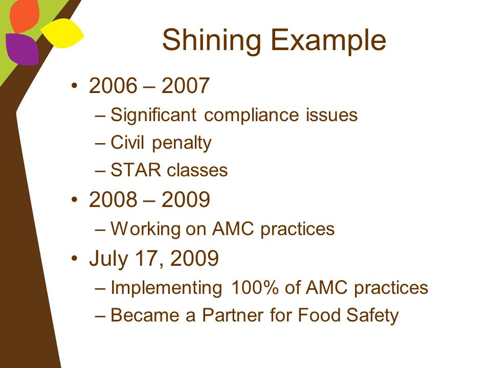 Shining Example 2006 – 2007 2008 – 2009 July 17, 2009
