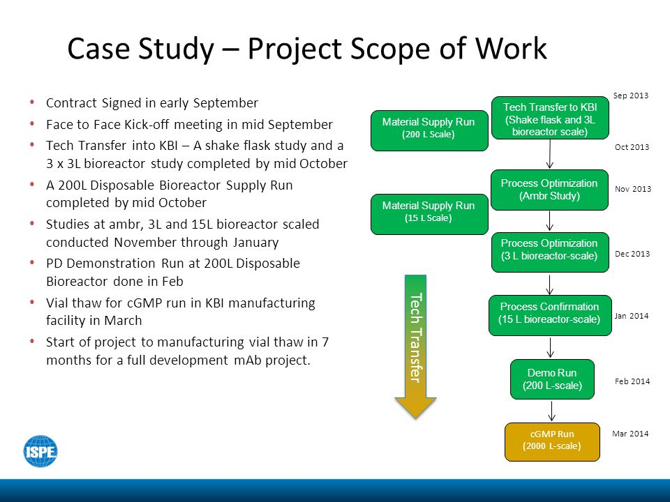 Case Study – Project Scope of Work