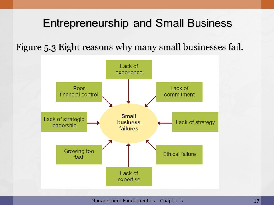 Figure 5.3 Eight reasons why many small businesses fail.
