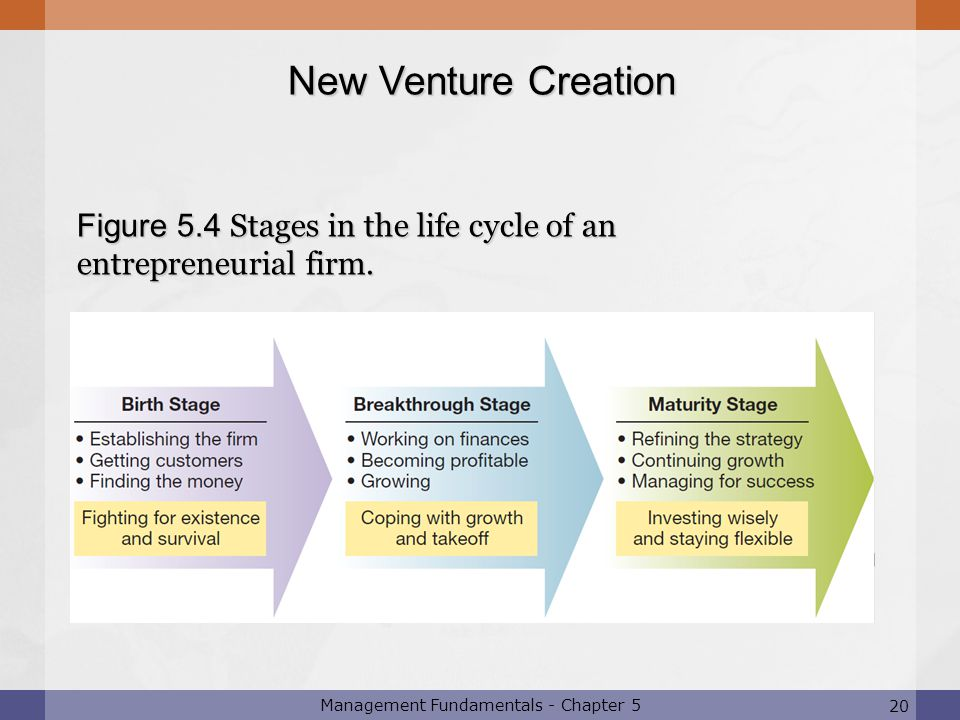 Figure 5.4 Stages in the life cycle of an entrepreneurial firm.