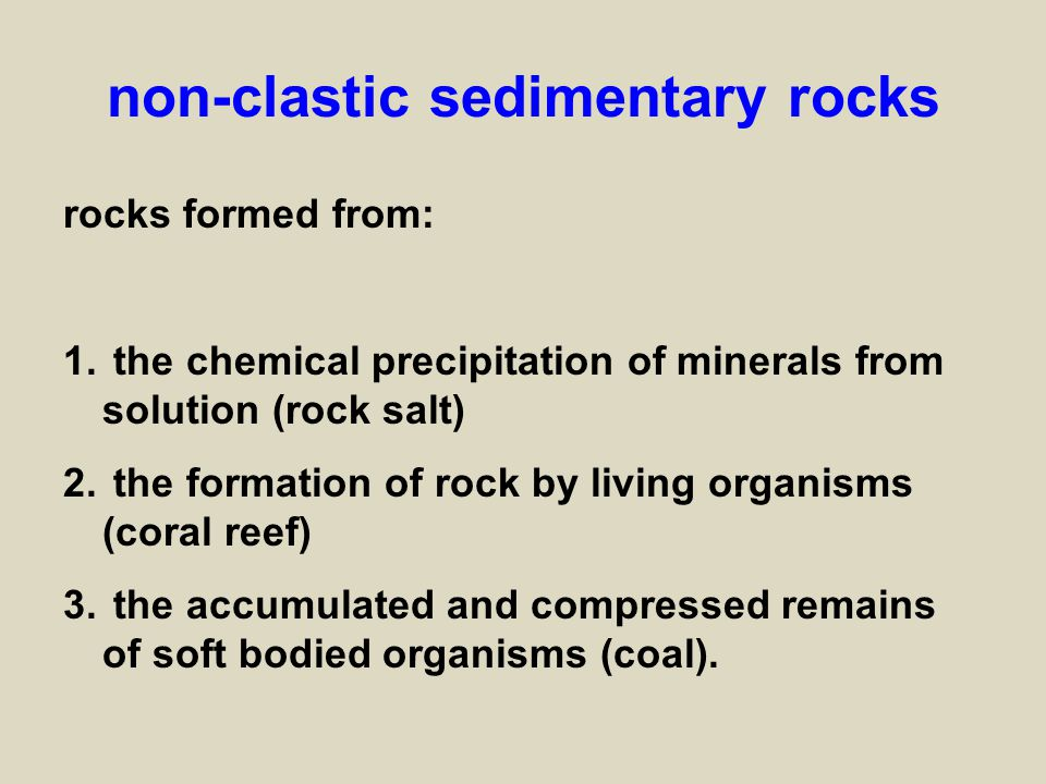 Sedimentary Rocks. - ppt download
