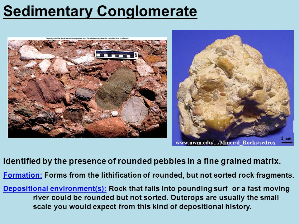 Sedimentary Conglomerate