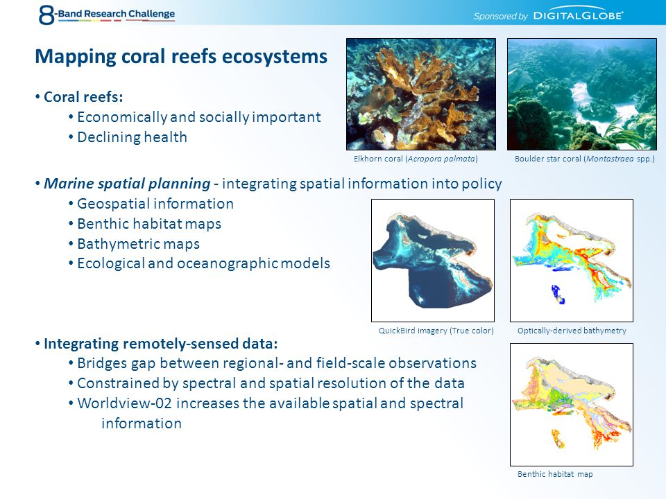 Mapping coral reefs ecosystems