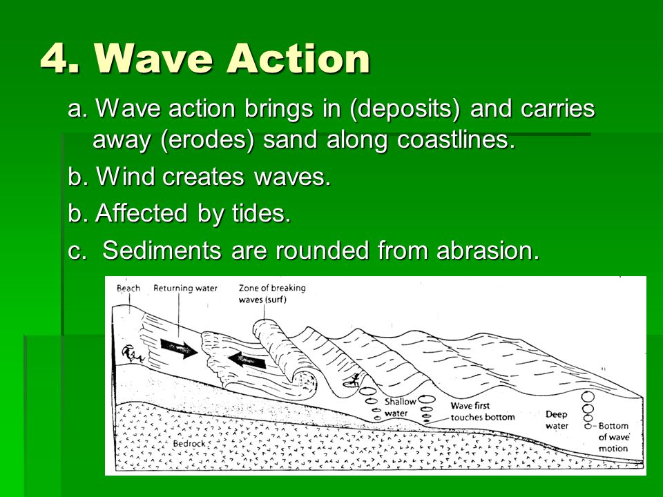 4. Wave Action a. Wave action brings in (deposits) and carries away (erodes) sand along coastlines.