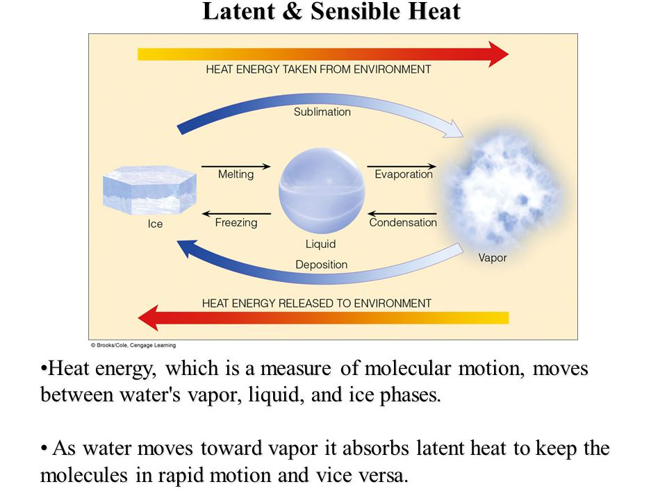 Latent & Sensible Heat Heat energy, which is a measure of molecular motion, moves between water s vapor, liquid, and ice phases.
