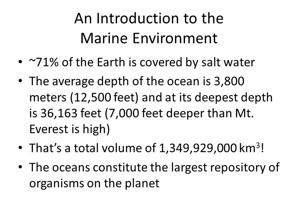 An Introduction to the Marine Environment