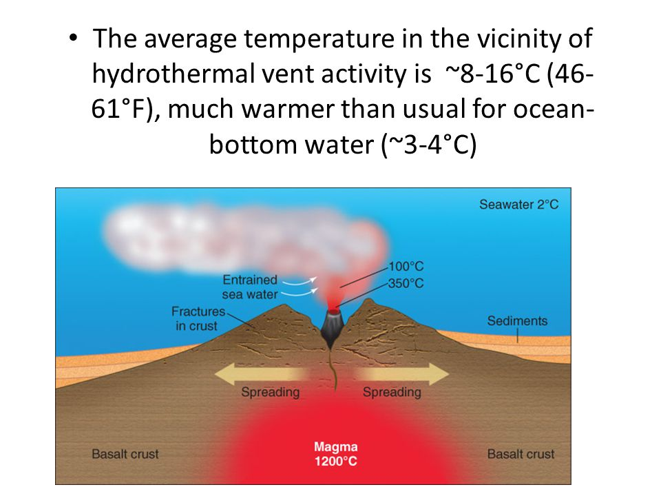 The average temperature in the vicinity of hydrothermal vent activity is ~8-16°C (46-61°F), much warmer than usual for ocean-bottom water (~3-4°C)