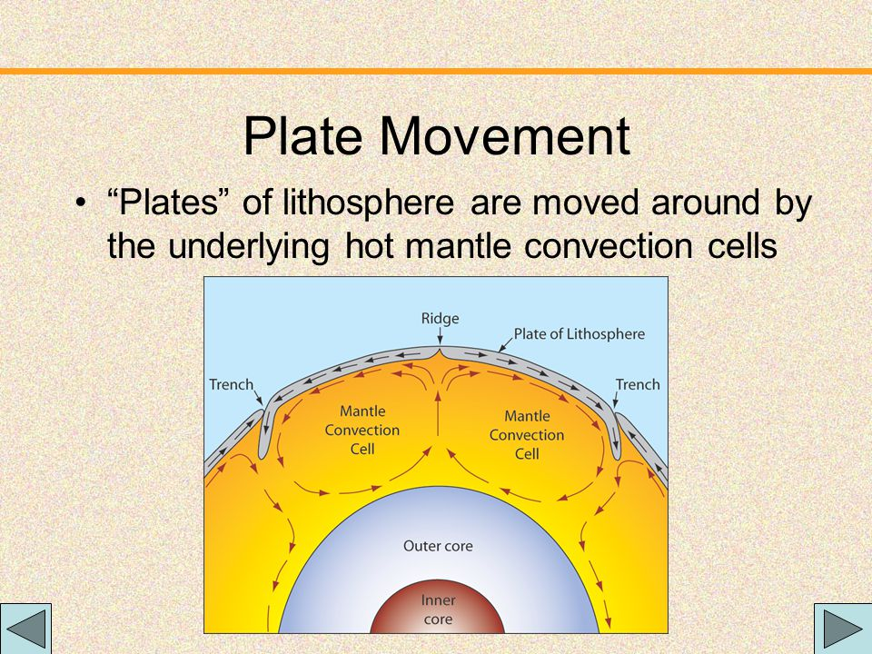 Plate Movement Plates of lithosphere are moved around by the underlying hot mantle convection cells.