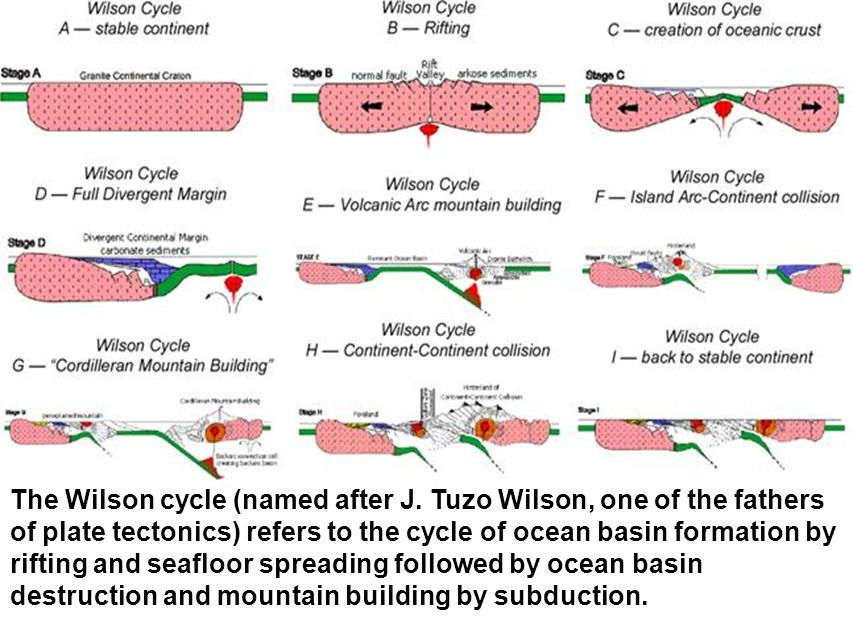 The Wilson cycle (named after J
