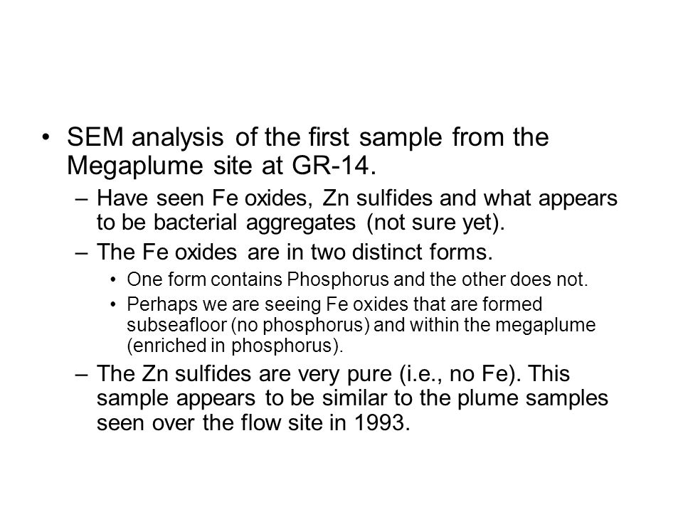 SEM analysis of the first sample from the Megaplume site at GR-14.