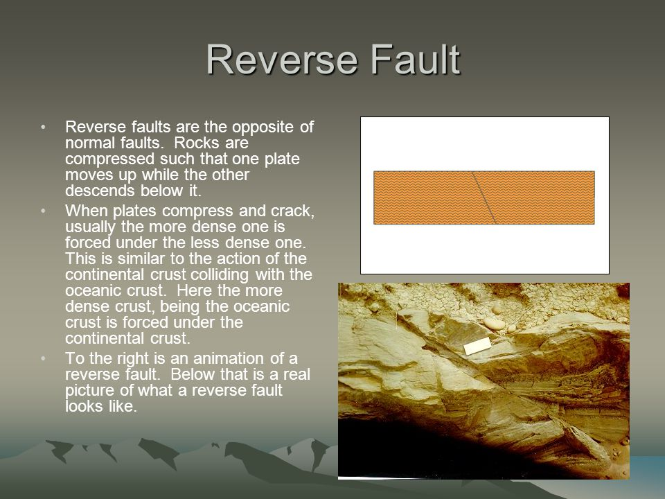 Reverse Fault Reverse faults are the opposite of normal faults. Rocks are compressed such that one plate moves up while the other descends below it.