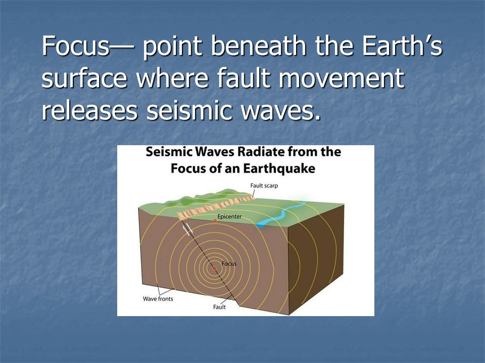 Focus— point beneath the Earth's surface where fault movement releases seismic waves.