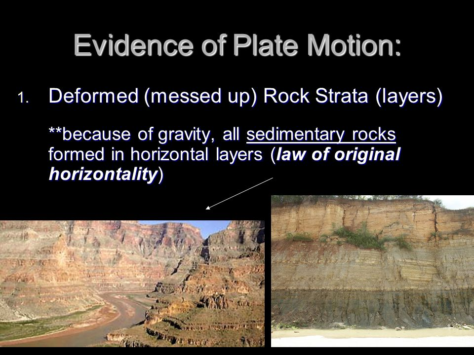 Evidence of Plate Motion: