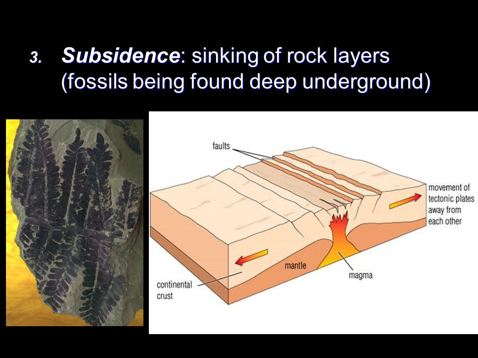 Subsidence: sinking of rock layers (fossils being found deep underground)