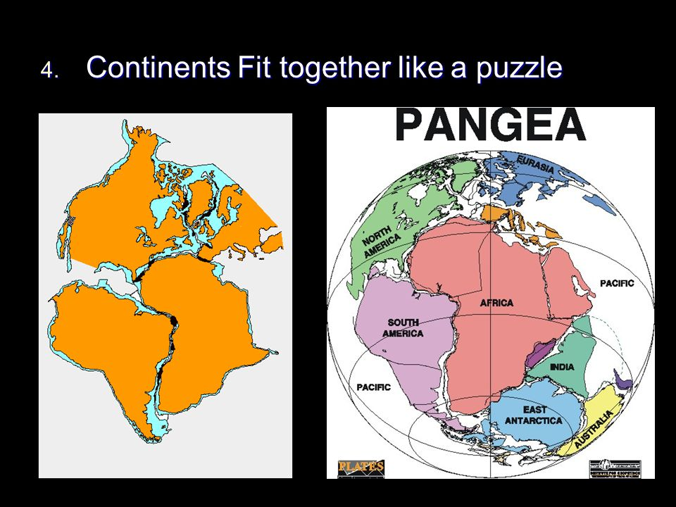 Continents Fit together like a puzzle