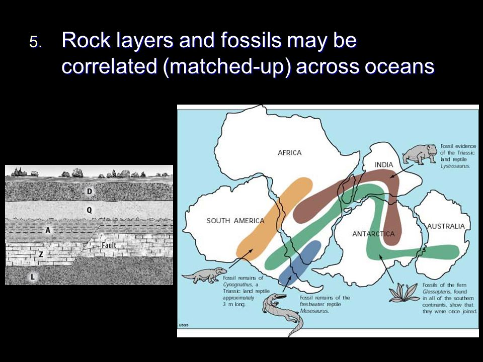 Rock layers and fossils may be correlated (matched-up) across oceans