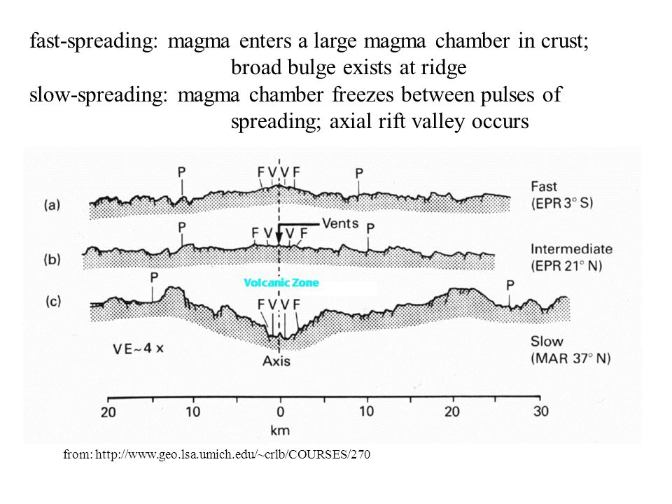 fast-spreading: magma enters a large magma chamber in crust;