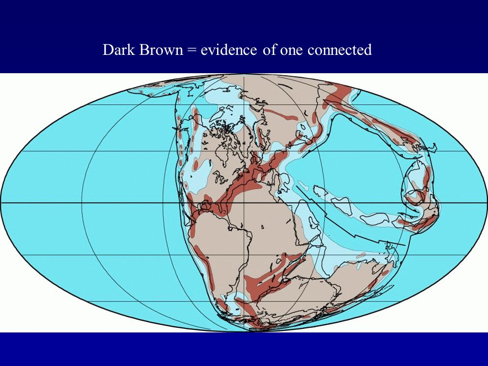 Dark Brown = evidence of one connected