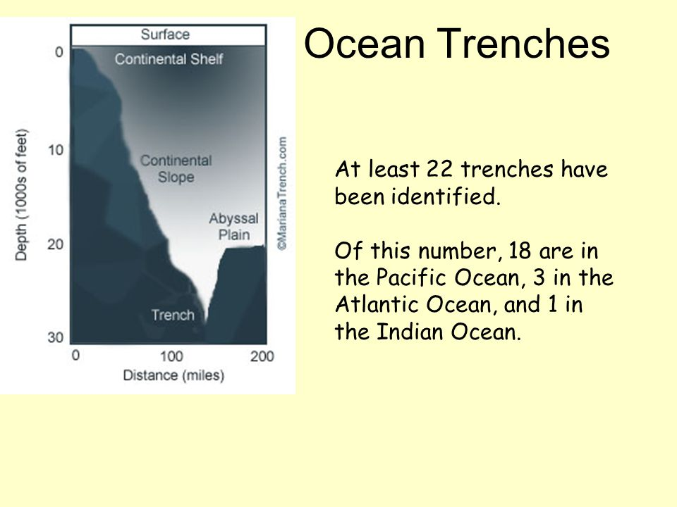 Ocean Trenches At least 22 trenches have been identified.