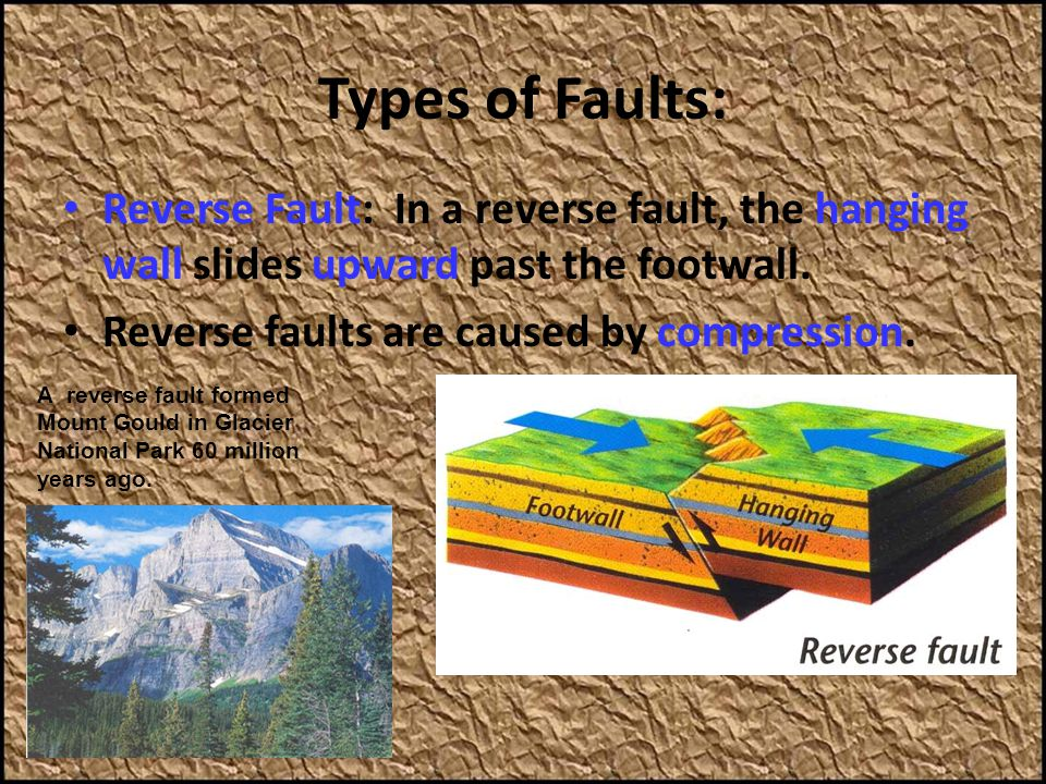 Types of Faults: Reverse Fault: In a reverse fault, the hanging wall slides upward past the footwall.
