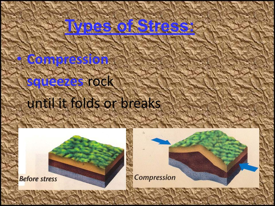 Types of Stress: Compression squeezes rock until it folds or breaks