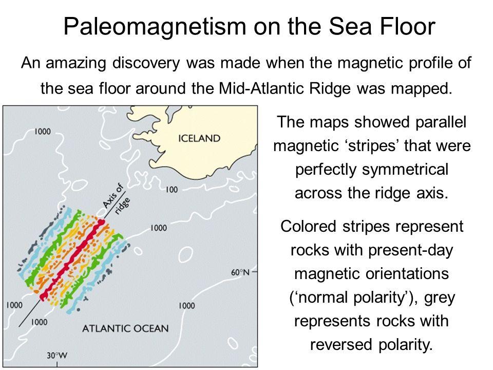 Paleomagnetism on the Sea Floor