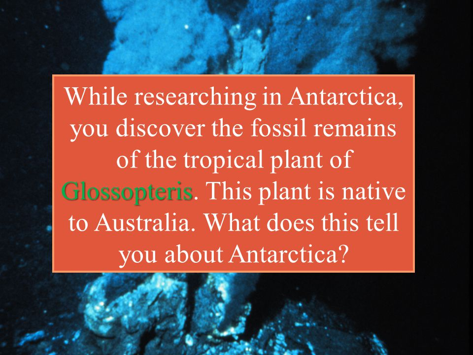 While researching in Antarctica, you discover the fossil remains of the tropical plant of Glossopteris.